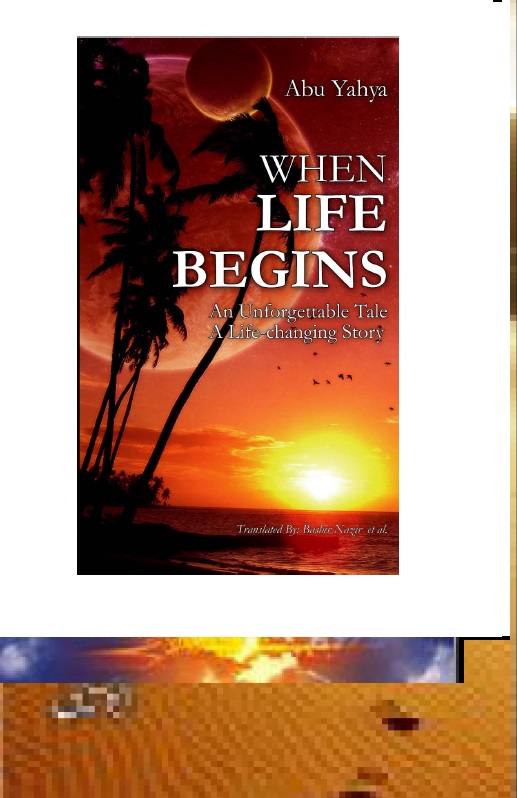 When Life Begins Pdf
